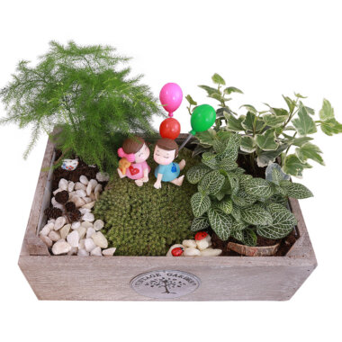 Florarie online - terrarium Bucuresti - livrare - cadou - vintage
