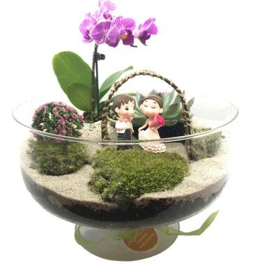 Buchet de flori - livrare flori - terrarium - idee cadou