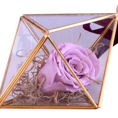 Buchet flori - florarie online - livrare flori - trandafir criogenat - idee cadou