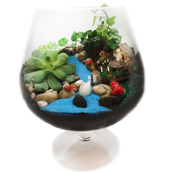 Terrarium - florarie online - livrari online - gradina - evenimente