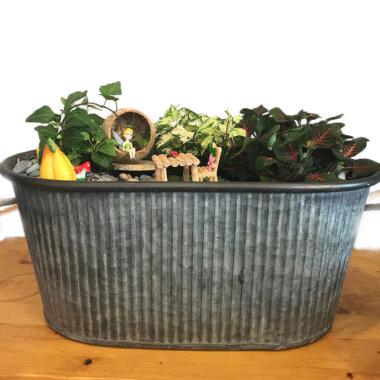 Terrarium - livrare flori Bucuresti - idee cadou - mini gradina - Tinker Bell