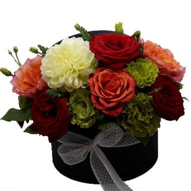 Cutie Flori - Elegant Flower