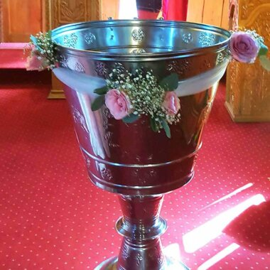Cristelnita flori Bucuresti - Ilfov