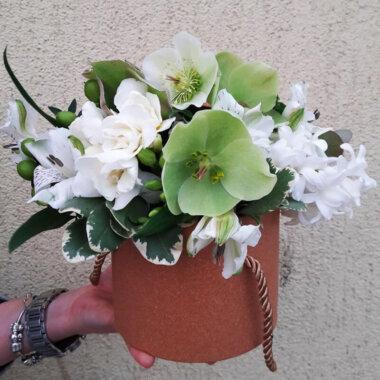 Livrare gratuita flori - Bucuresti