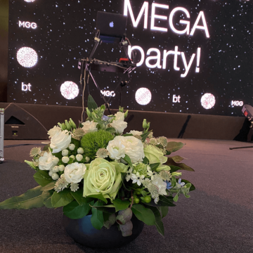 Party Megagen la Radisson Blu