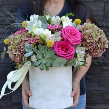 Cutie flori Planta suculenta - Frezie - Trandafiri
