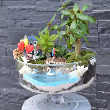 Terrarium plante suculente Forever Friends Bucuresti