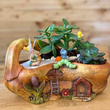 Terrarium plante suculente vas ceramic Tinkerbell