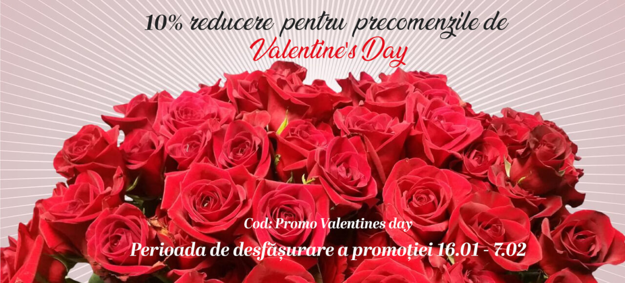Stefan-Lulu-Garden-Sfantul-Valentin-Bucuresti_trandafiri