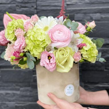 Cutie Flori - Velvet and lisianthus